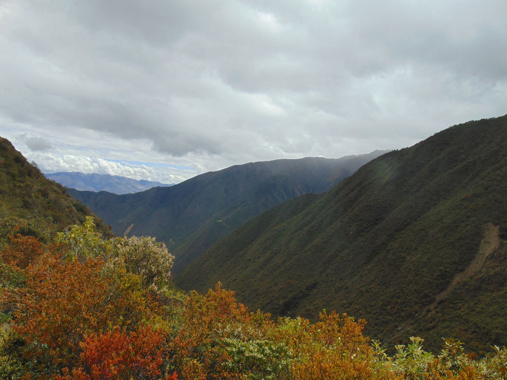 This Year's Field Campaign Has Been Completed In Río Abiseo National Park, Peru
